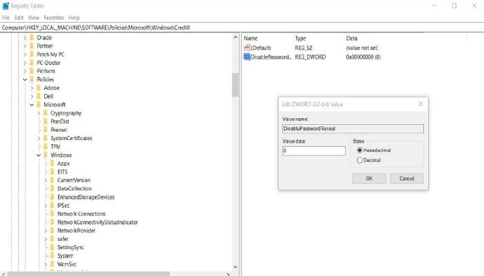 Remove Password Reveal Button via Registry Editor