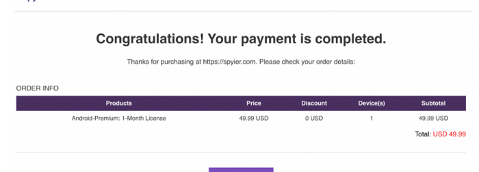 Spyier Payment Process