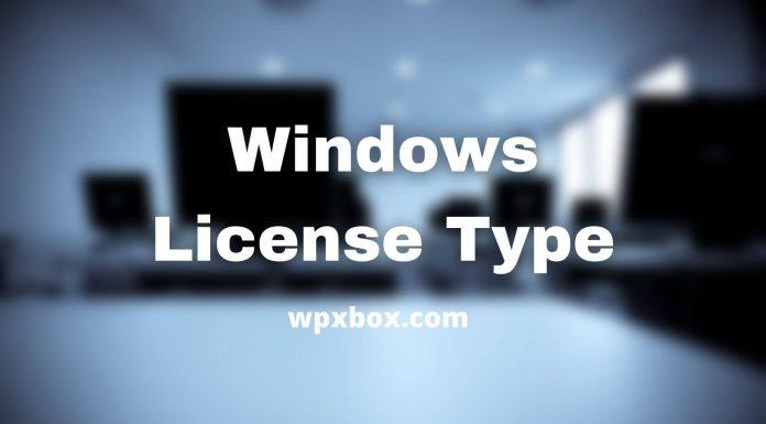 Windows License Type