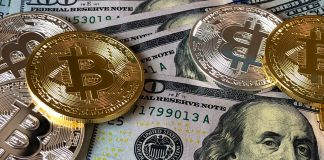 Gold Pegged USD Pegged Cryptocurrencies