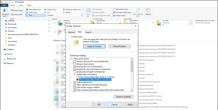 show hidden files, folders and drives largest file finder
