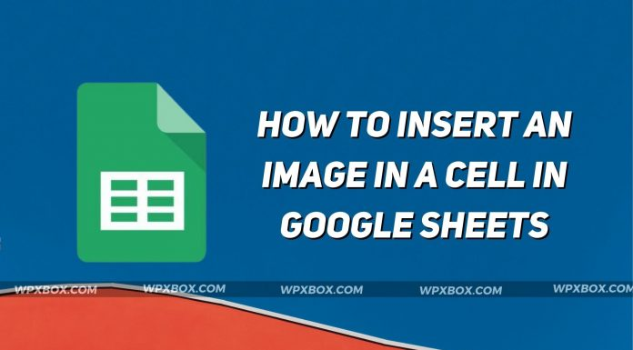 How to Insert an Image in a Cell in Google Sheets