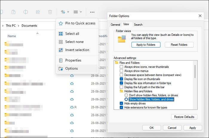 Windows 11 File Explorer Folder Options