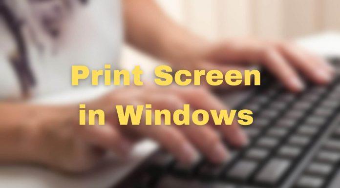 Print Screen Windows Screenshot