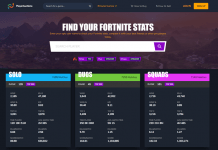 Check Fortnite Stats