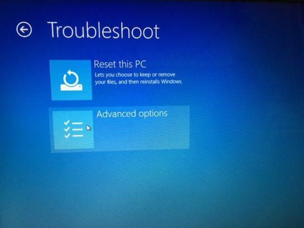 Windows Recovery Advanced Options